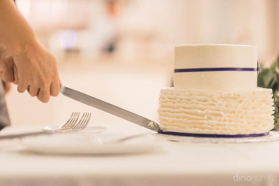 Cake cutting of Kara adn Will's